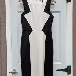 bcbgmaxazria Evelyn ivory & black sheathdress